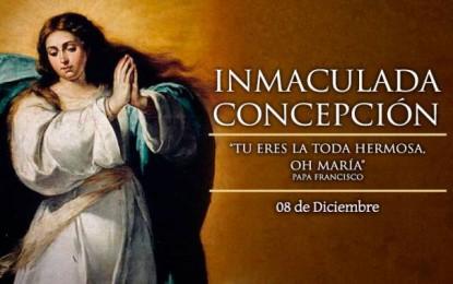 Feliz Solemnidad de la Inmaculada Concepción