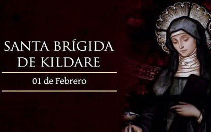 Santa Brígida de Kildare, patrona de Irlanda