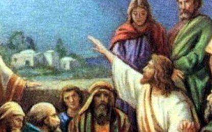Del santo Evangelio según san Mateo 5, 43-48