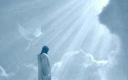 ¿Cómo puedo saber cuál es la voluntad de Dios para mi vida?