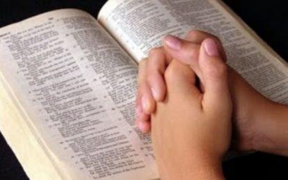 Lecturas de hoy Martes 10 de la 2ª semana de Adviento